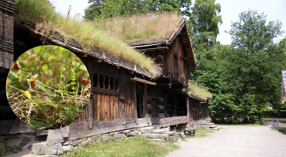 музей Осло