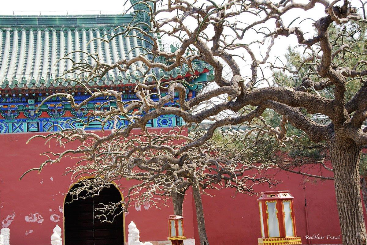 дворец уединения, Тяньтан