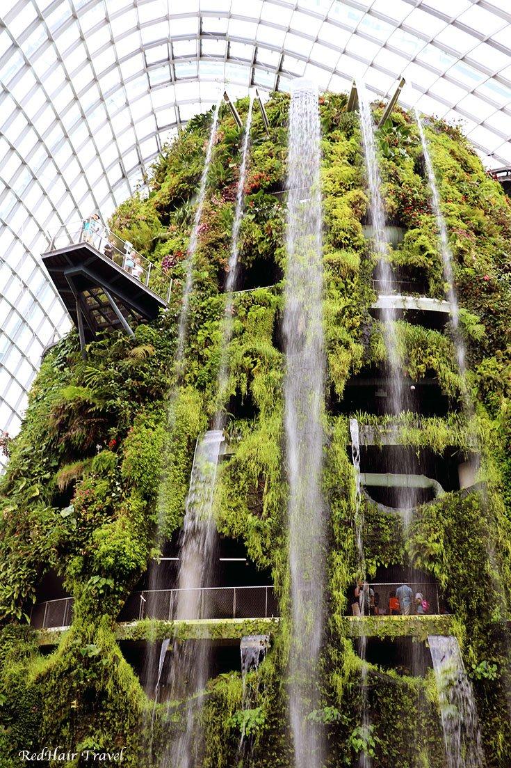 Облачный лес Сингапур