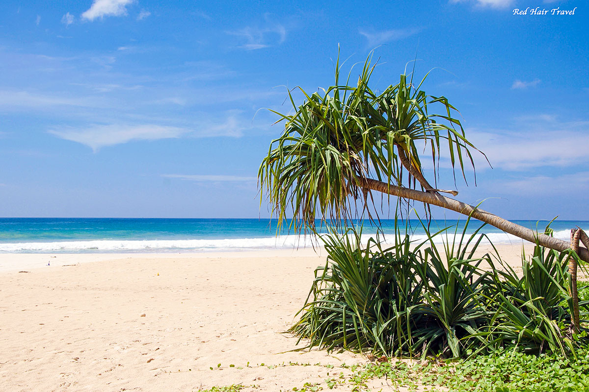 пляж на Шри Ланке
