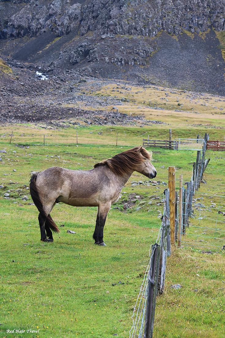 маршрут в Исландию