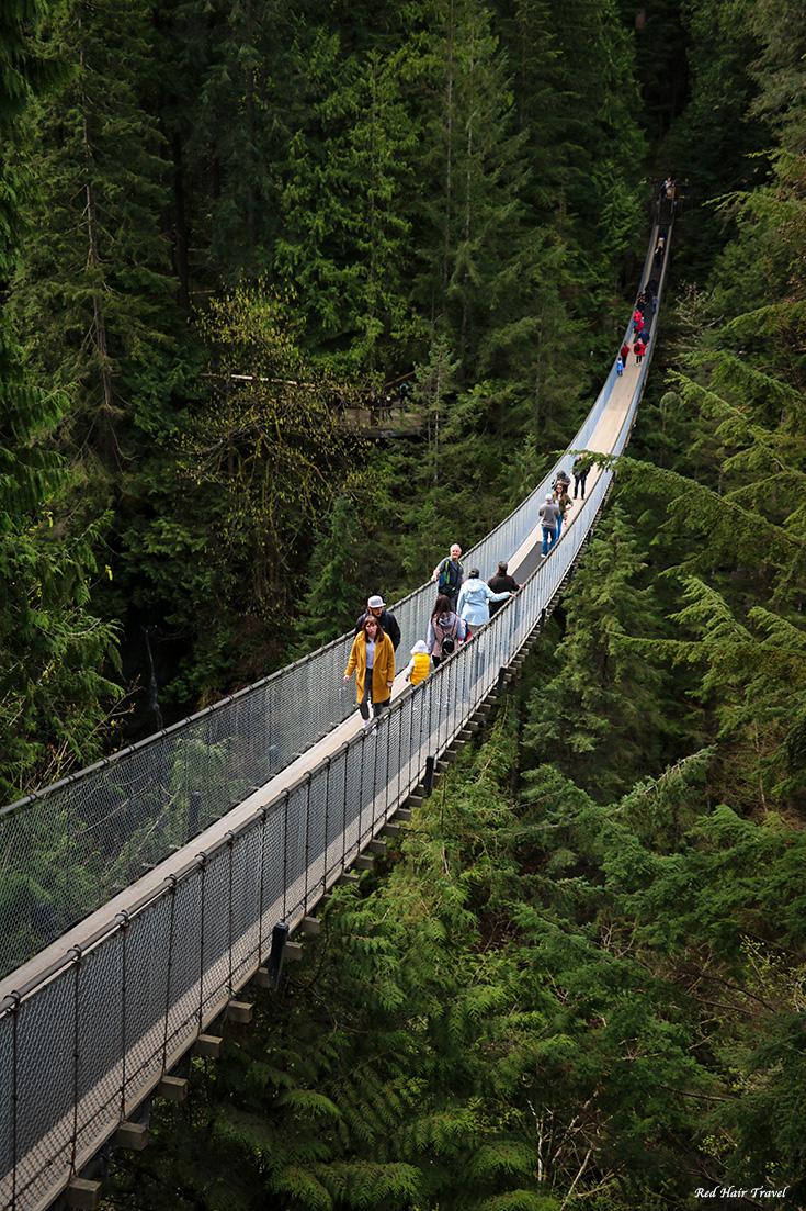 Что посмотреть в Ванкувере? Мост Капилано, Ванкувер
