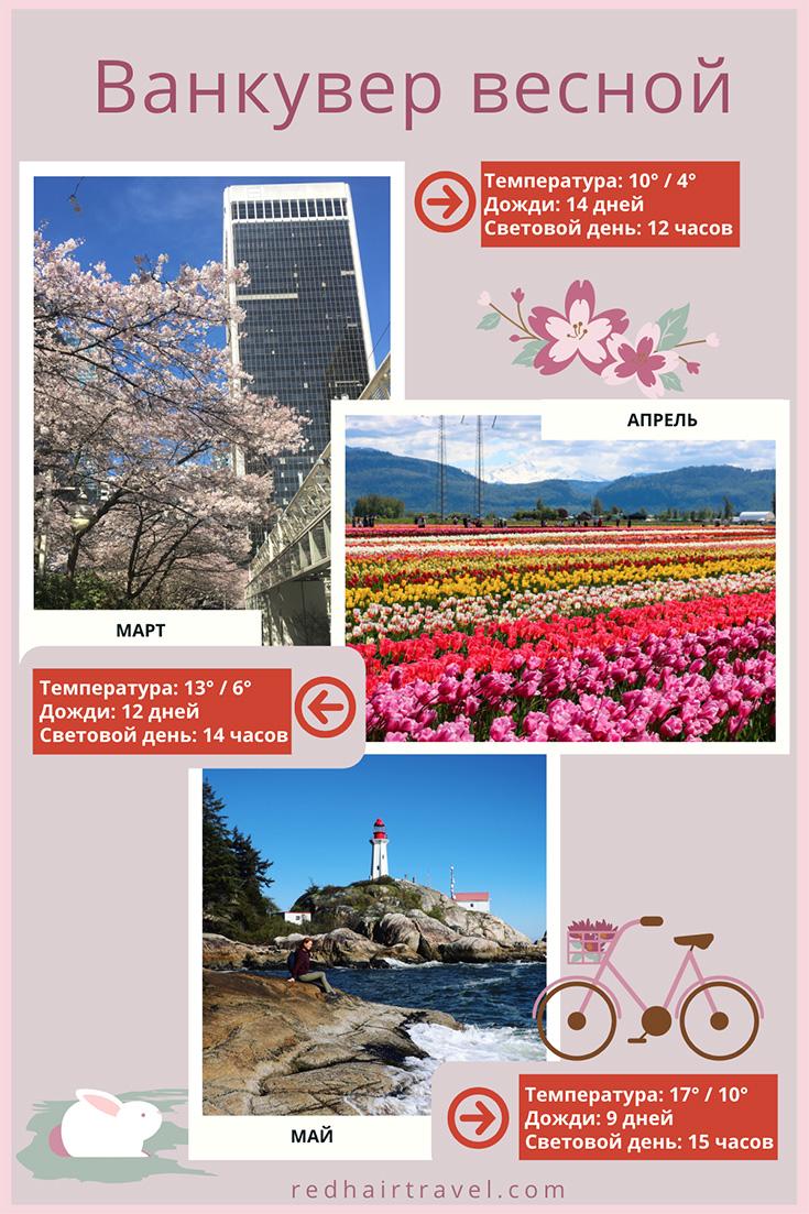 когда ехать в Ванкувер, погода весной, фестиваль тюльпанов и сакур