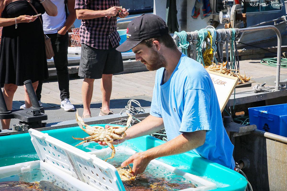 рыбацкая набережная, Виктория