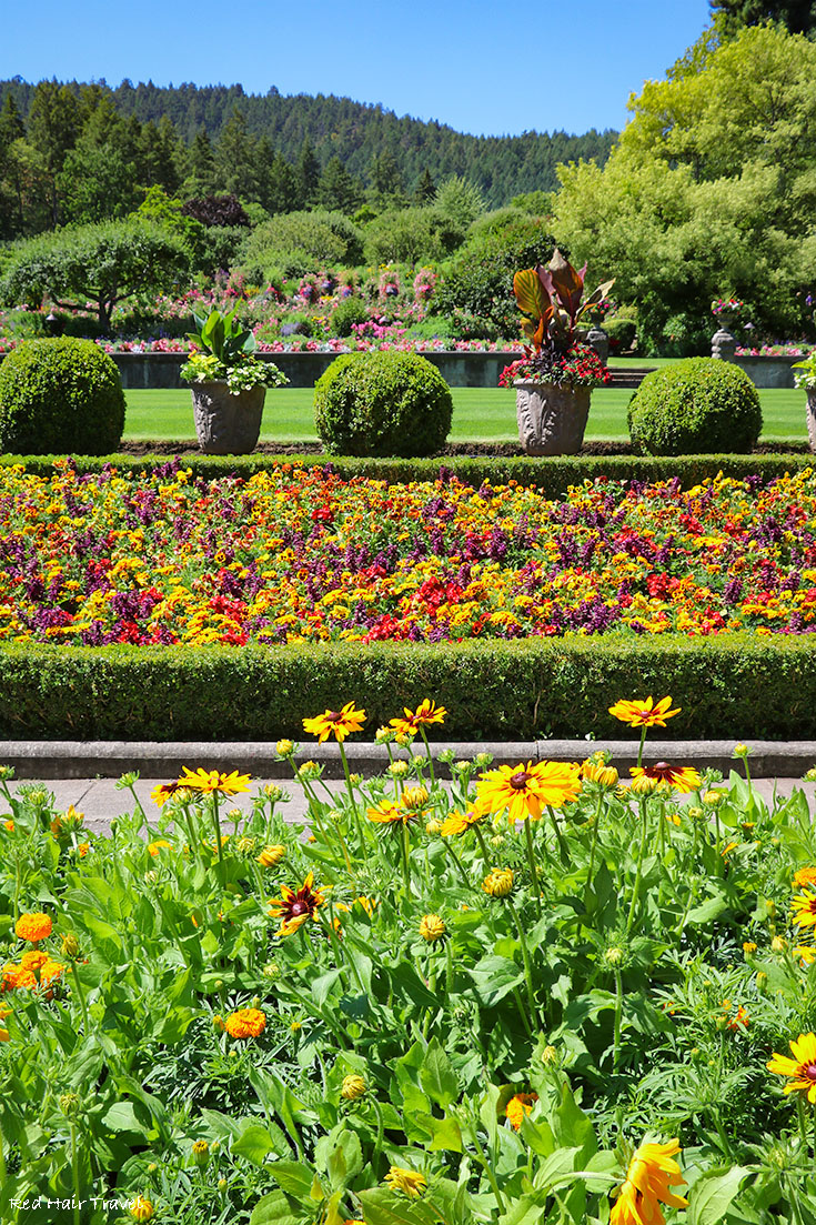 Сады Бутчартов (The Butchart Gardens)