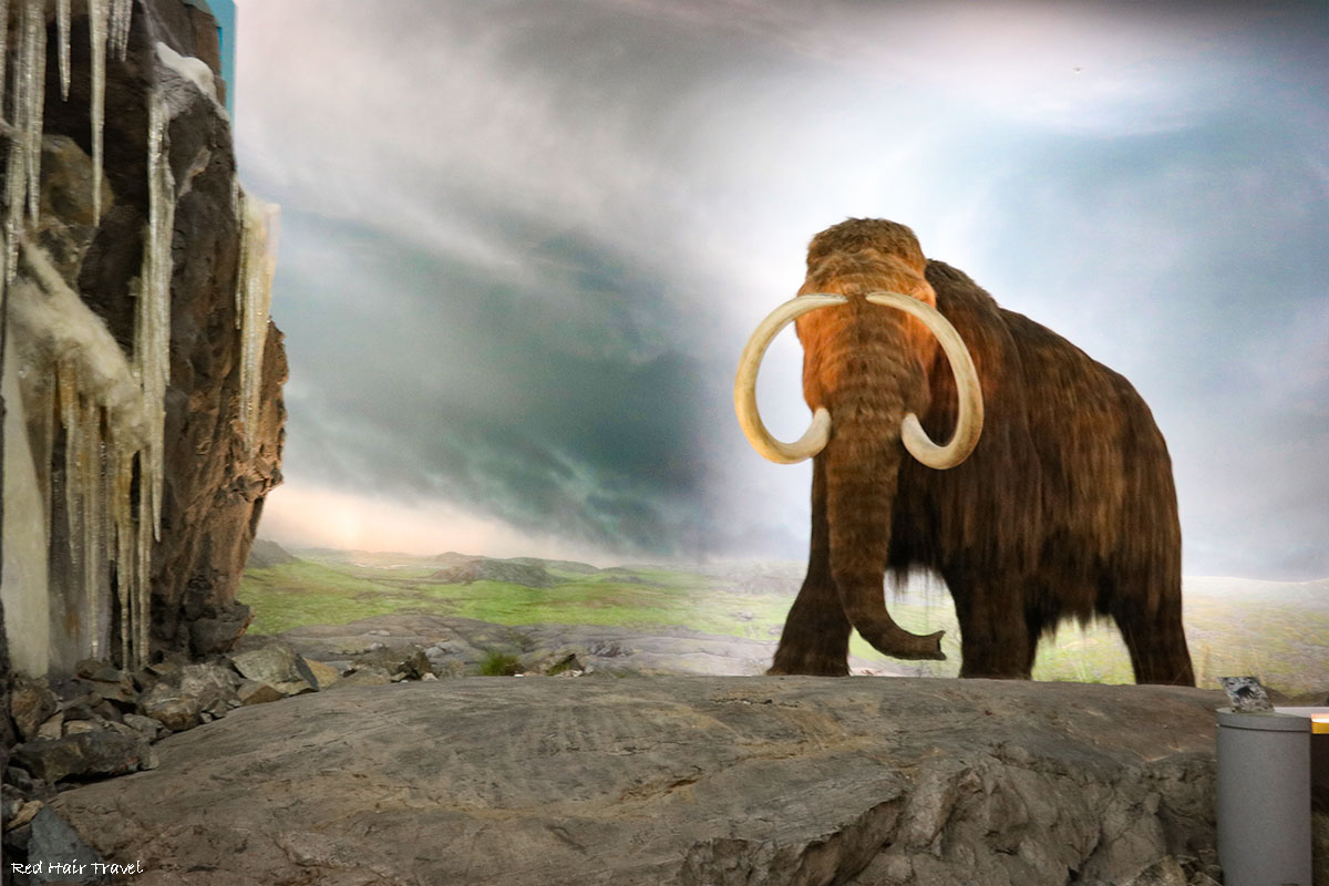 Royal BC Museum, Mammoth, Victoria