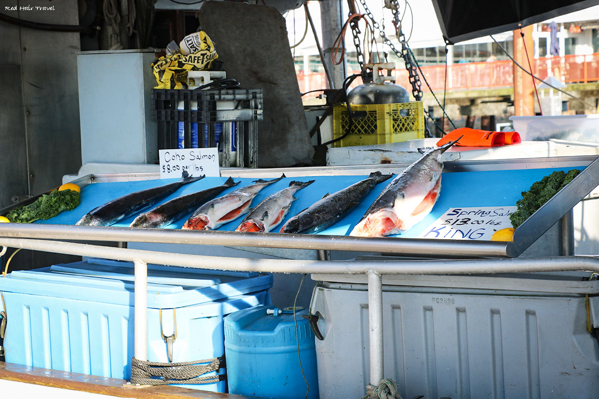 Steveston harbour, Стивстон, рыбный рынок