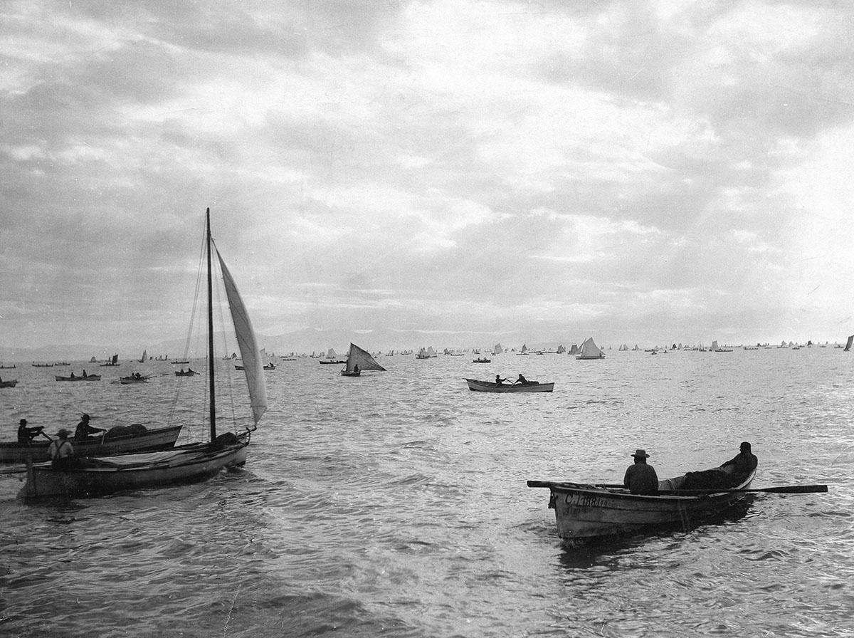 Рыболовный флот в устье Фрейзера