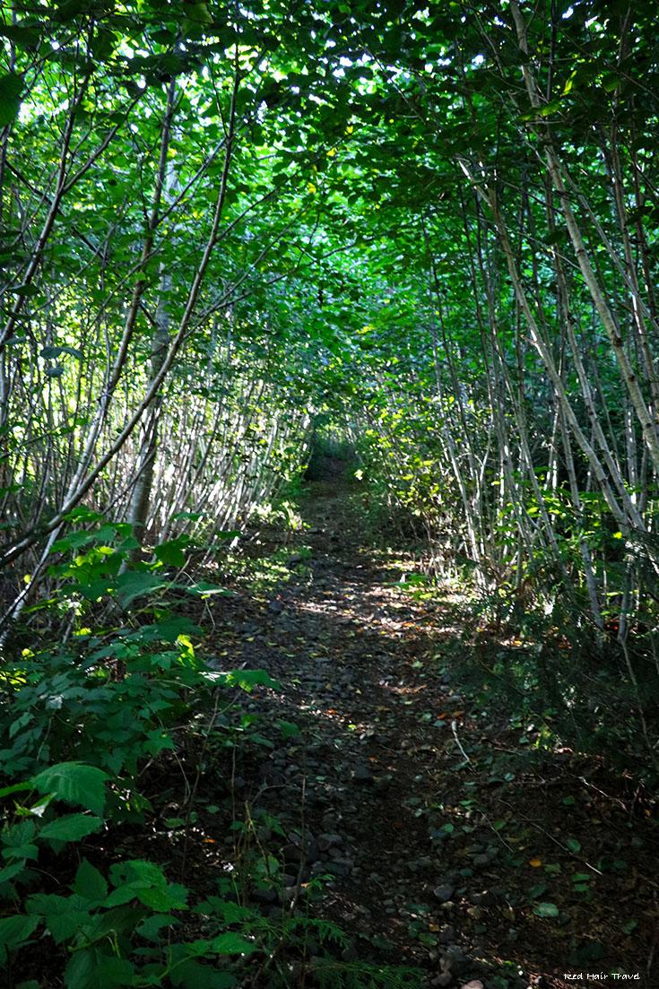 Dakota 576 Crash Site Trail
