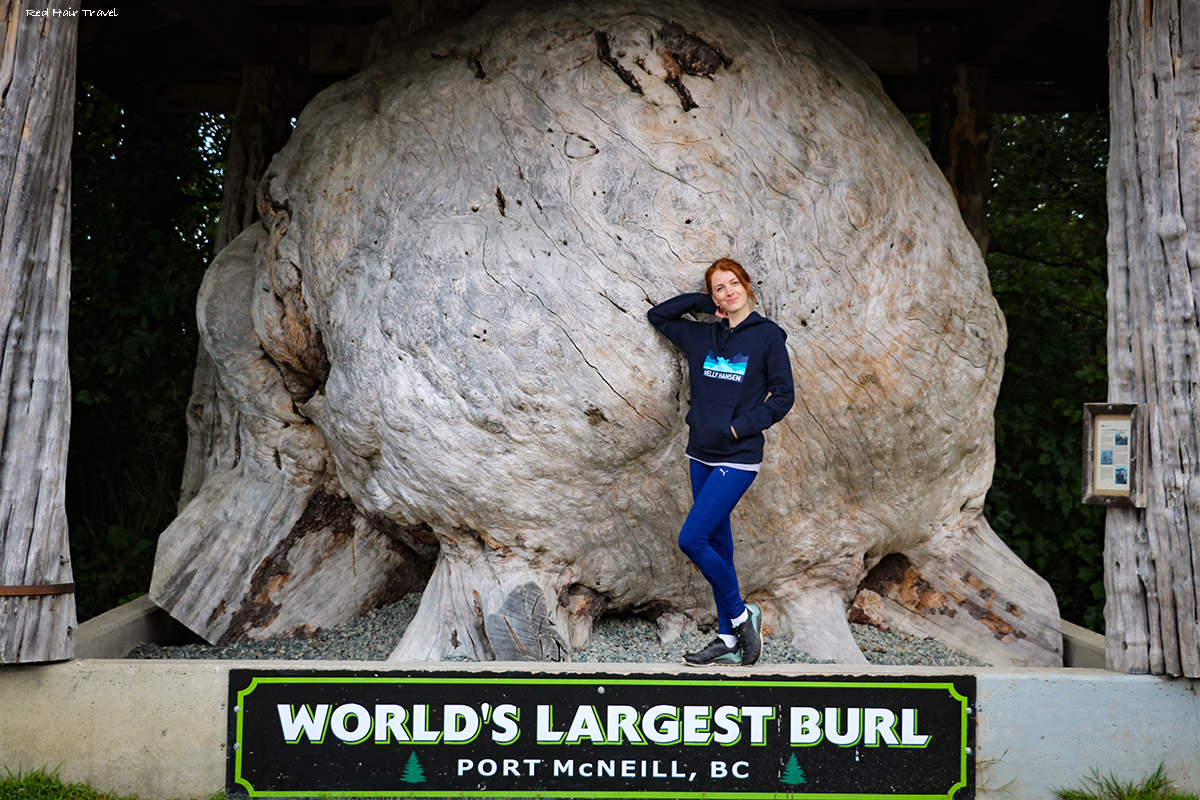 Port McNeill, North Vancouver Island, World's largest burl