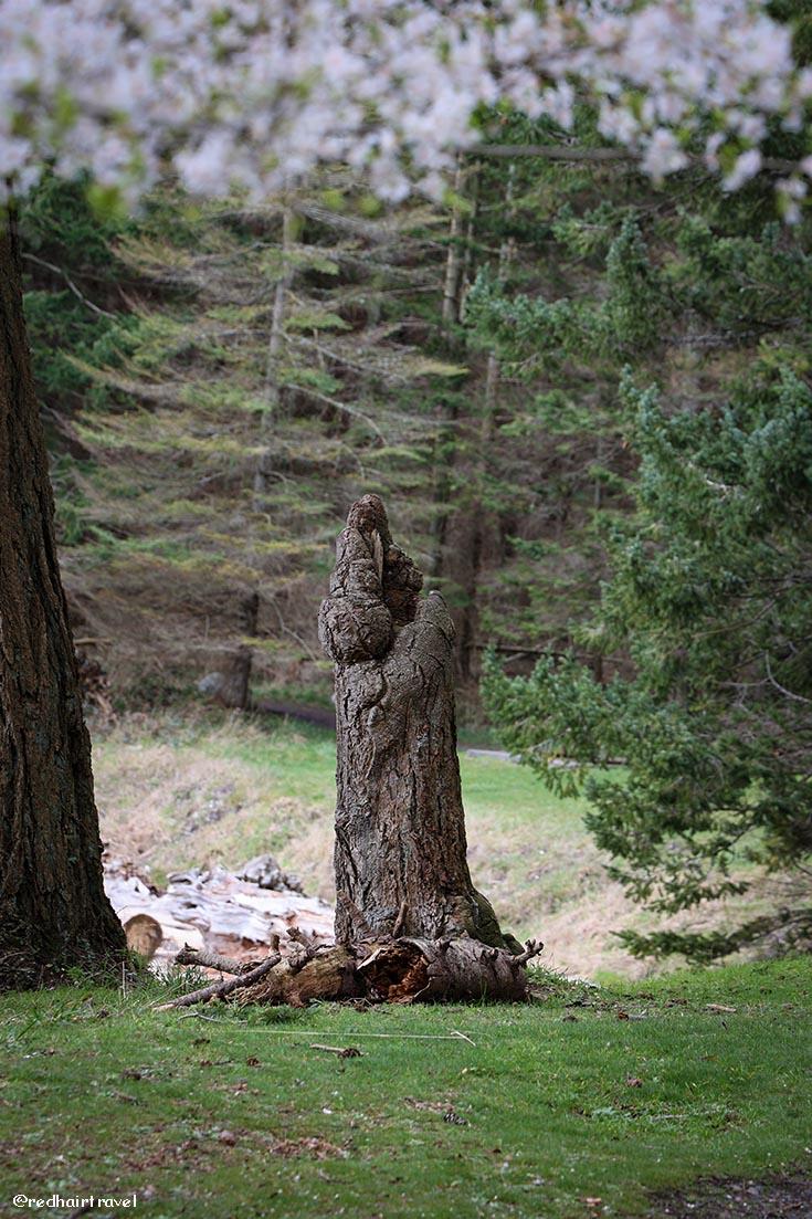 Drumbeg Provincial Park, Gabriola, BC