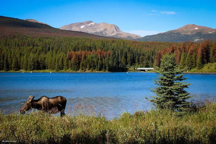 Maligne Lake, Rockies, Джаспер