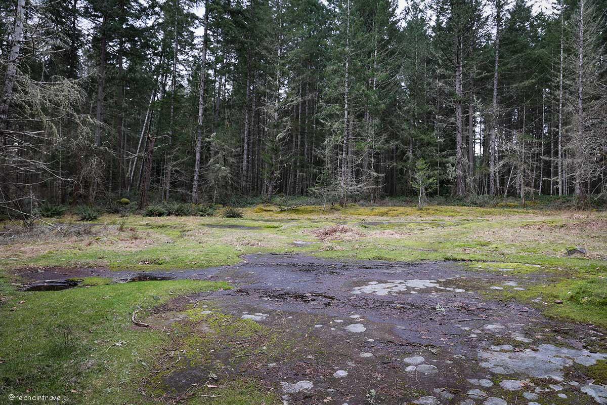 Petroglyphs, Gabriola