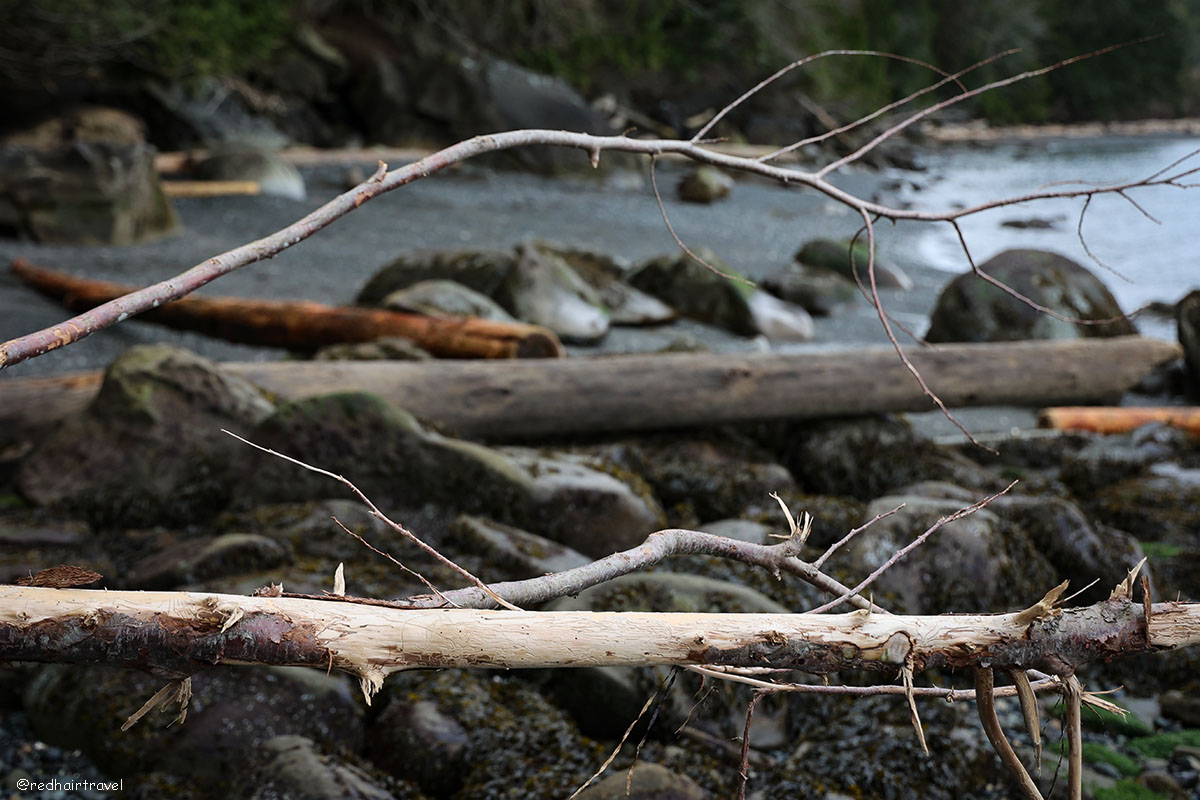 Sandwell Provincial Park