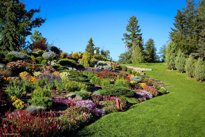 Prince George garden, маршрут по Gold Rush Trail, BC