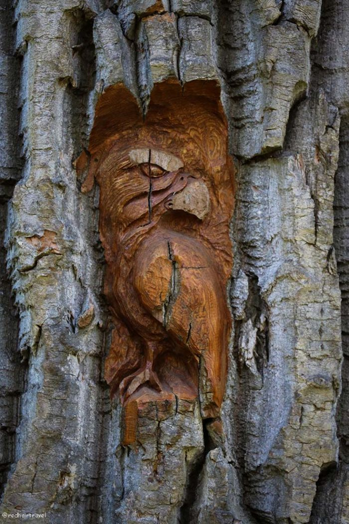wood carving, маршрут по Gold Rush Trail, BC