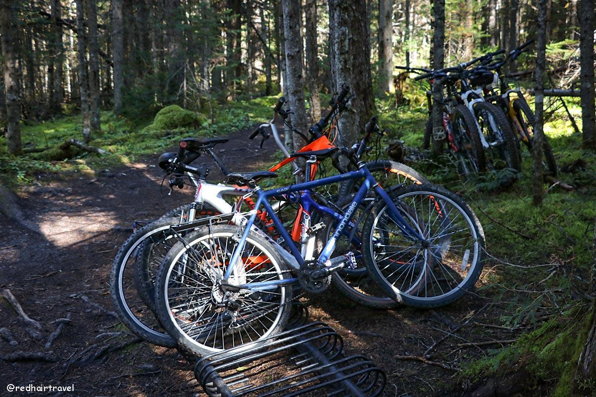 Berg lake Trail, BC, Canada